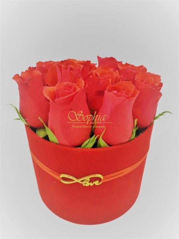 Sexy Red Velvet