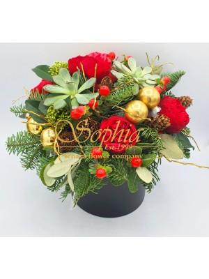Sviatočný pozdrav (Vianočná edícia)